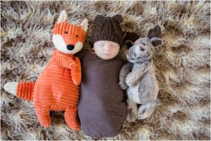 Jonas and His Woodland Friends –  Indianapolis Newborn Photographer