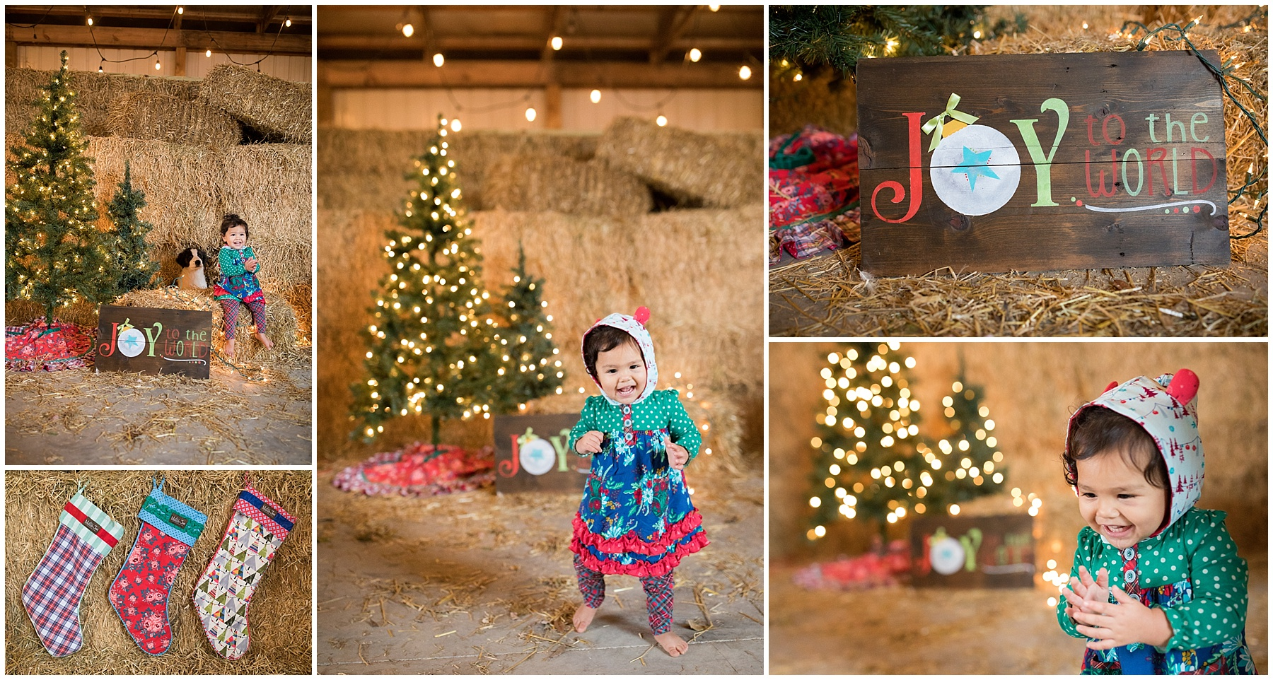 Indianapolis Holiday Mini Session, Zionsville Holiday Mini Sessions