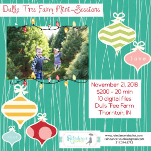 2018 Dulls Tree Farm Holiday Mini Sessions – Thornton, IN