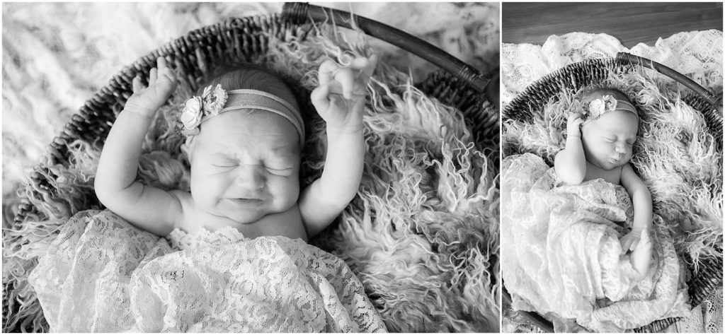 Collage of baby girl in basket. Indianapolis Baby Photography