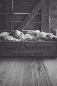 Indianapolis Newborn Photographer-46