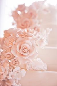 Indianapolis Wedding Photographer-21 2
